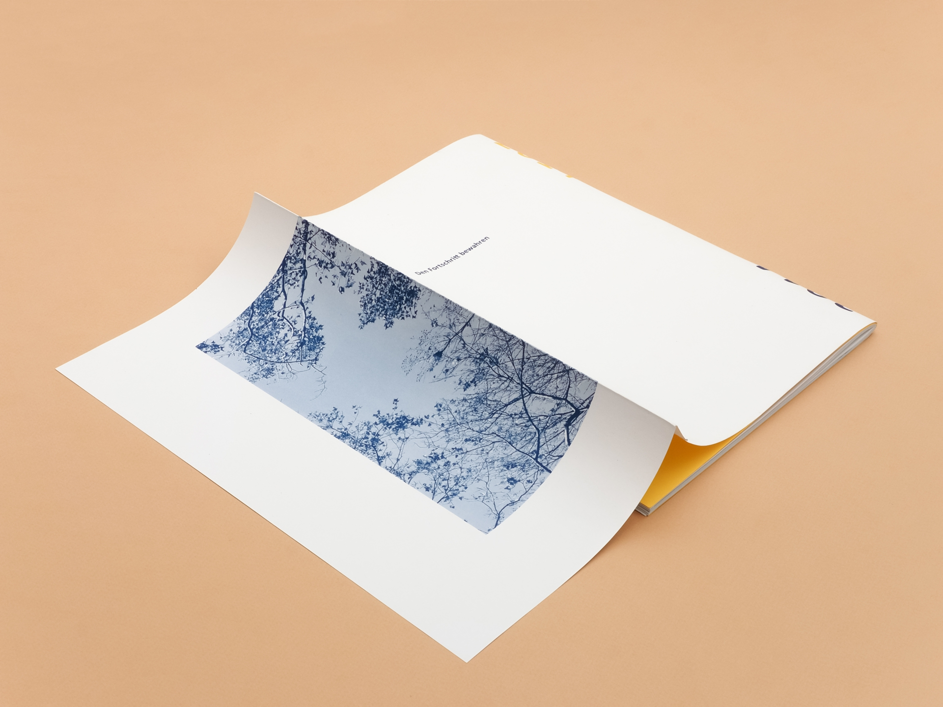 Grafikum Annual & environmental reports for FM-Plus